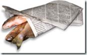 fishwrap-new