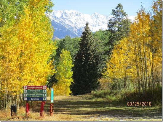 Vail-Ski-Trails-Vail-Mtn-1